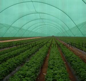 agro shade net 3